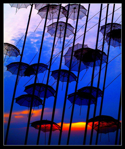 Amazing Umbrella Art