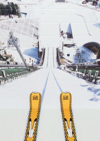ski field or washroom?